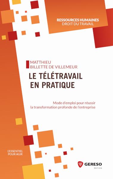 LE-TELETRAVAIL-EN-PRATIQUE